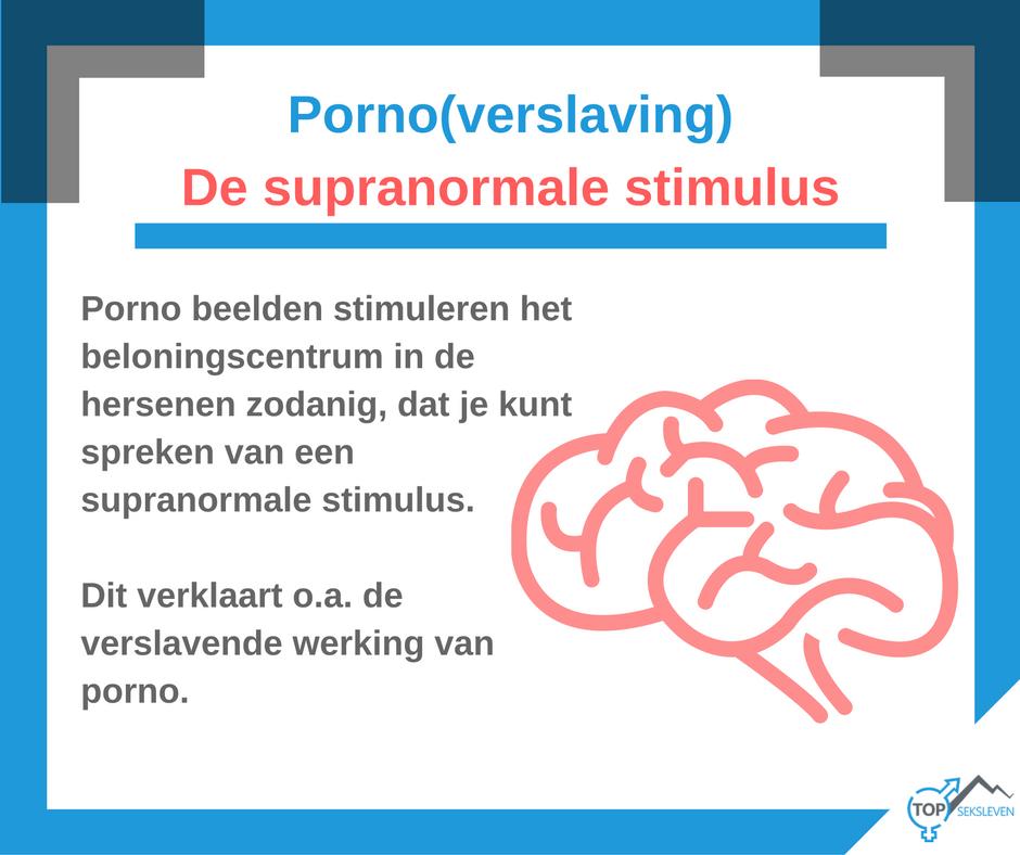 porno en supranormale stimulus